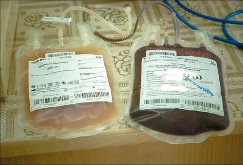 Донорство крови: как стать донором (требования, льготы), где и как сдать кровь