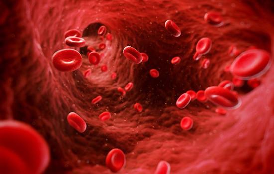 Лейкоциты в кале у грудного ребенка, эритроциты в кале у взрослого