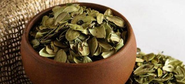 Брусника при цистите: как заваривать брусничный лист, как принимать отвар, польза брусничного морса.