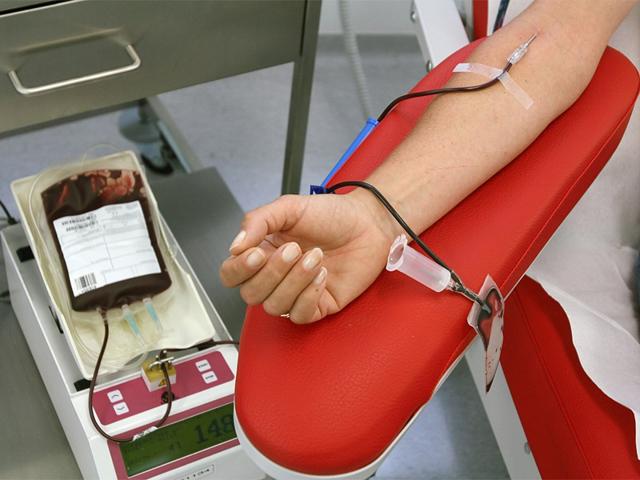 Плазмаферез: что это такое, показания и противопоказания, мембранный и дискретный виды, аппарат для очистки крови, проведение при беременности, сколько стоит процедура