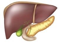 Мочевина в крови понижена: причины, симптомы, способы коррекции