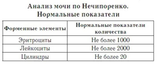 Анализ мочи по Нечипоренко, что показывает и о чем говорит, расшифровка результатов у женщин и мужчин.