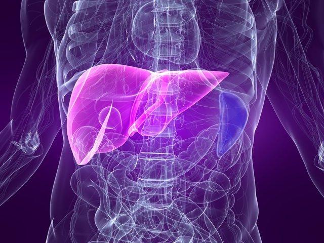 Стеркобилин в кале положительный, реакция на билирубин в кале у грудничка