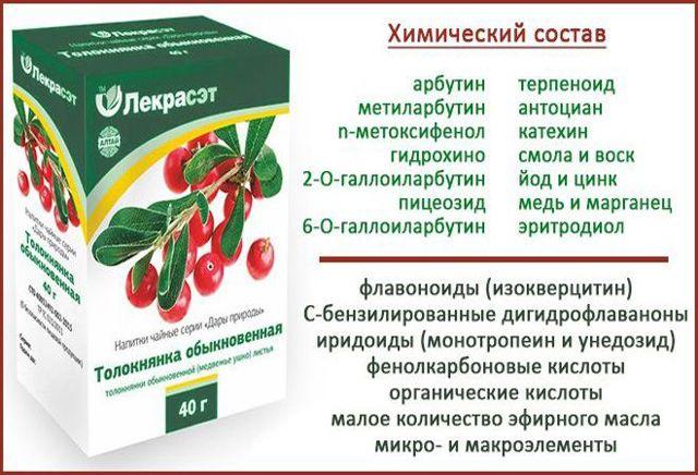 Толокнянка при цистите (медвежьи ушки): рецепты, способы приема, отзывы пациентов.
