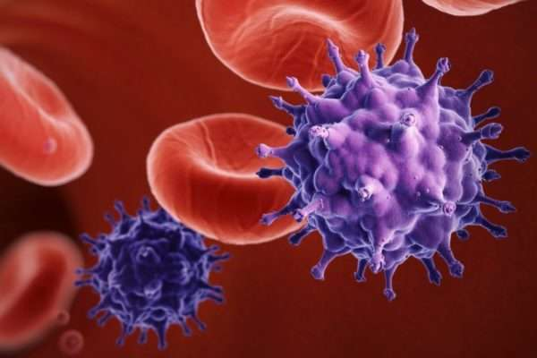 Цитомегаловирус: что это такое, инфекция, симптомы у детей, женщин и мужчин, как передается от человека к человеку, сдача анализа крови и расшифровка, фото