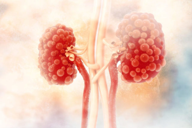 Мочевина в анализе крови: функции, нормы в анализе, причины повышения или снижения