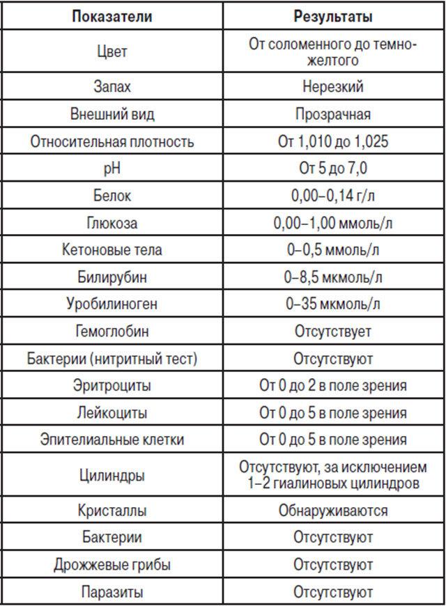Анализ мочи по Нечипоренко, как собирать, как сдавать, какое количество мочи необходимо для анализа.