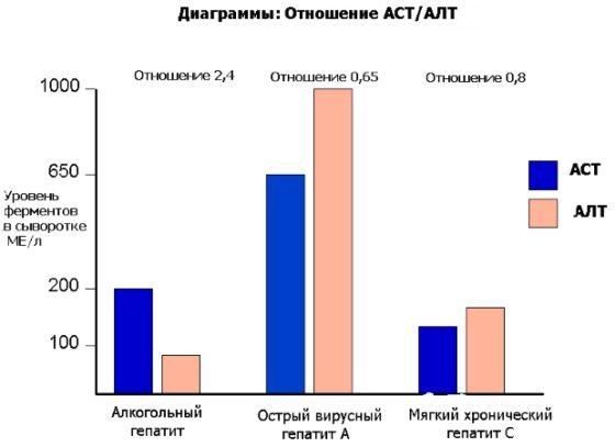 АЛТ и АСТ - норма в крови в биохимическом анализе у взрослых и детей