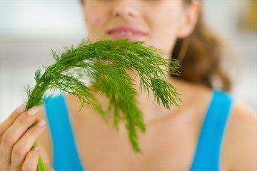 Семена укропа: лечебные свойства и противопоказания для ...