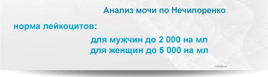 Анализ мочи по Нечипоренко: норма, расшифровка результатов