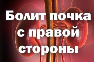 Если болит почка с правой стороны: причины, симптомы и лечение
