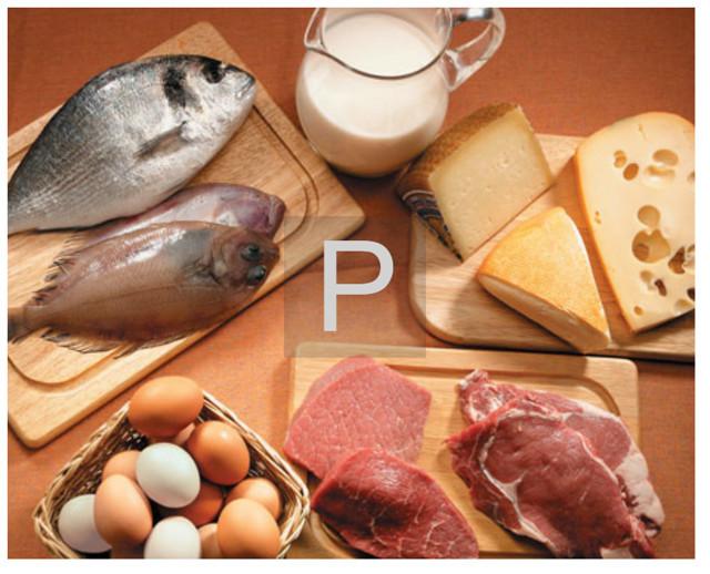 Щелочная фосфатаза: норма в крови, причины повышенной концентрация