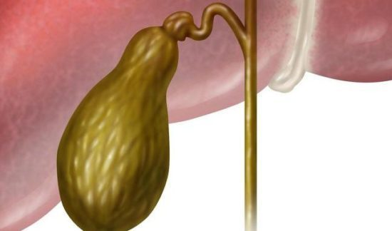 Полипы в желчном пузыре: симптомы и лечение, код по МКБ-10, чем опасно заболевание, что делать, безоперационное вмешательство