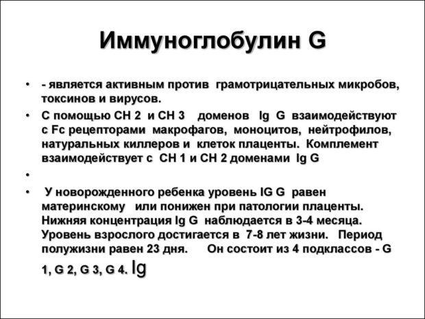 Иммуноглобулин G: что это? норма, причины повышения и понижения