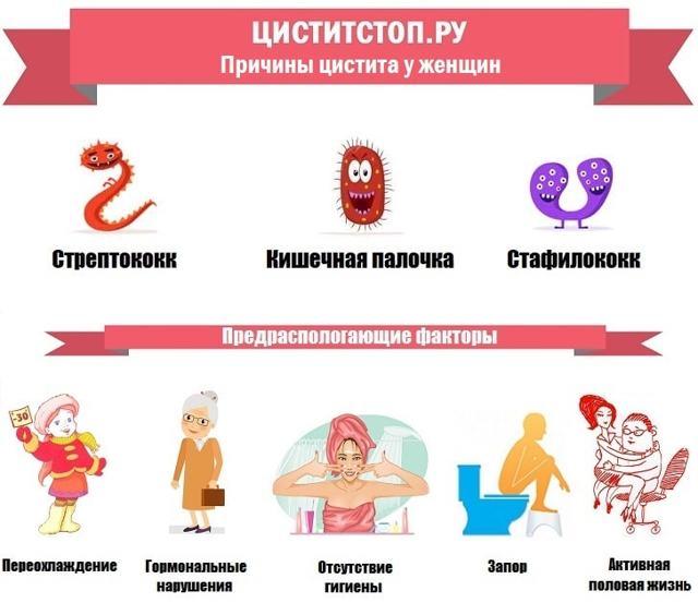 Уросептики при цистите у женщин: полный список уроантисептиков, виды и классификация, особенности применения