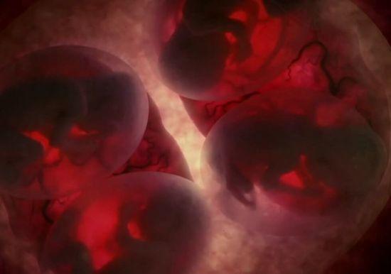 ХГЧ в моче по дням от зачатия - можно ли выявить беременность?