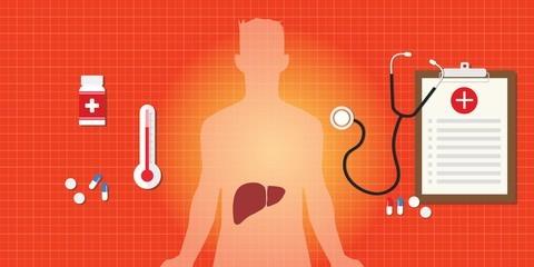 Hbsag анализ крови: что это такое и расшифровка результатов
