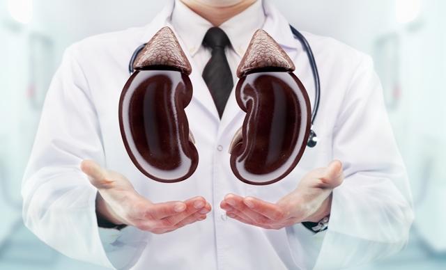 Боли в почках после приема антибиотиков: причины, чем это опасно и что делать