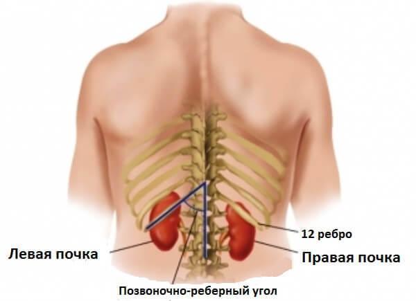 Нефроптоз почек: что это такое, правое, левое, двухстороннее расположение, 1 2 степень заболевания, код по МКБ-10, гимнастические упражнения ЛФК, операция
