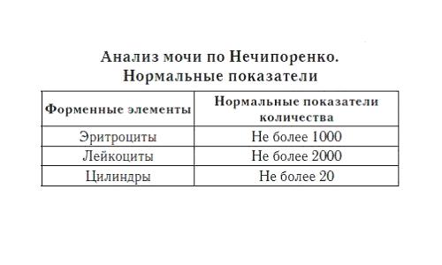 Анализ мочи по Нечипоренко: норма у женщин, мужчин и детей, расшифровка показателей — лейкоциты, эритроциты, цилиндры
