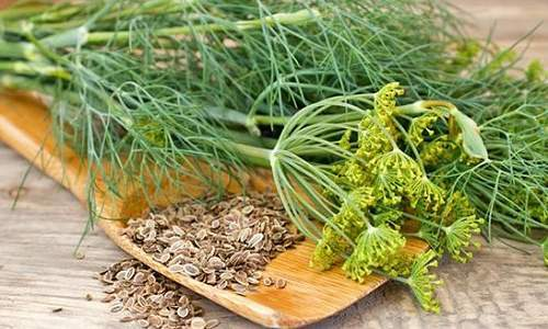 Народные средства при цистите: кукурузные рыльца, калина, гранатовый сок, семена льна, куркума, облепиха, хвощ полевой, овёс, чеснок и др.