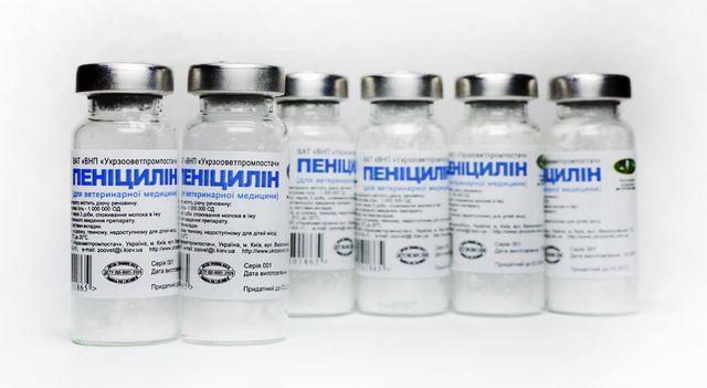 Что такое сифилис: каким путем передается, лечение, классификация (бытовой, врожденный, вторичный, скрытый), какие возбудители бывают, инкубационный период